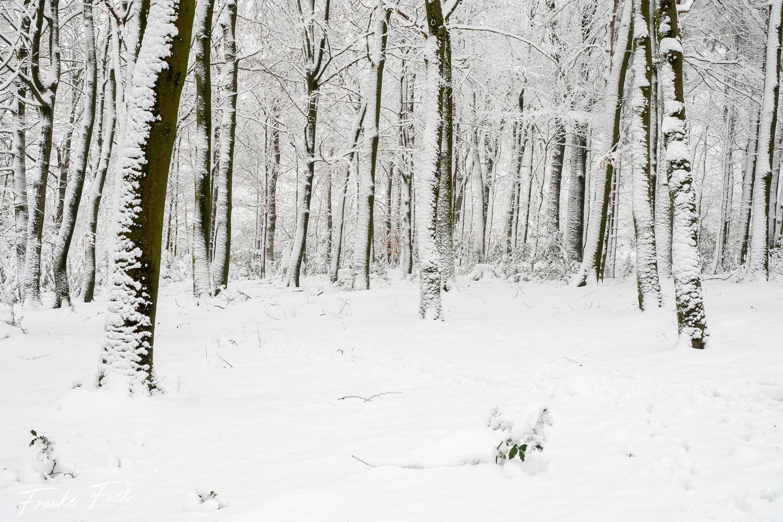 Finde den Schneemann